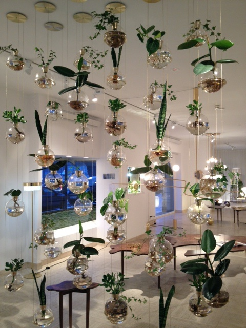 Lorrie Webb : this dreamlike arrangement of hanging glass planters ...